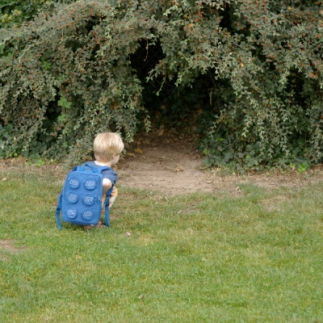 child-hole-in-hedge-1